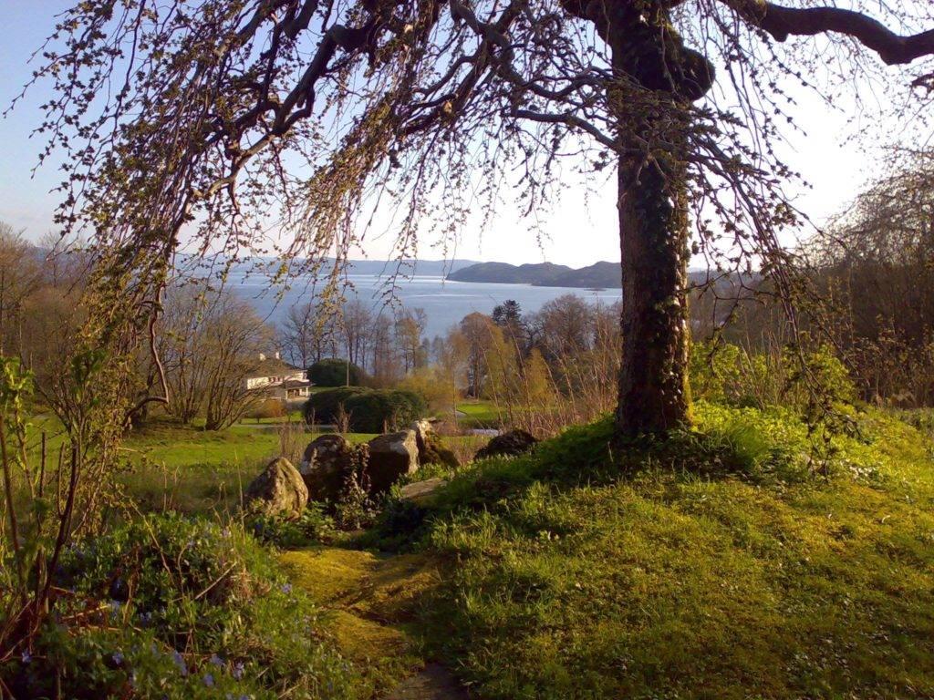 Utsikt ettermiddag fra steinhagen