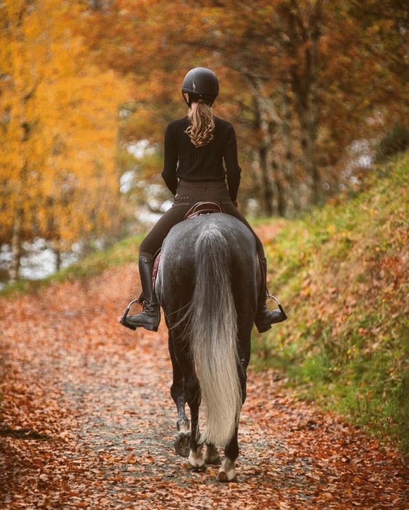 Høsttur med hest