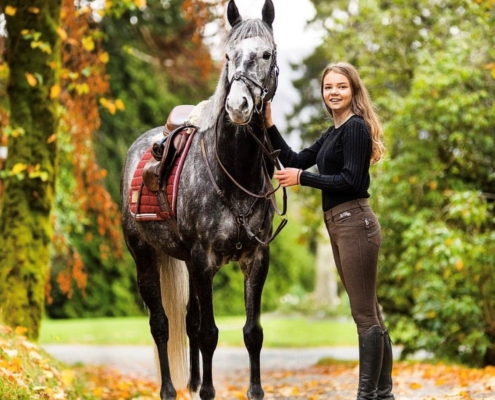 I parken med hest
